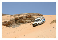 Desert Experience with Jeep Safari