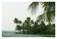 A Glimpse of Rural Kerala